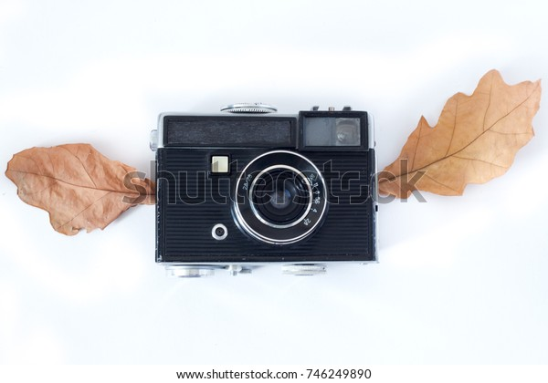 Vintage Analogue Photo Camera in Dry Maple Leaves as natural background, Top View