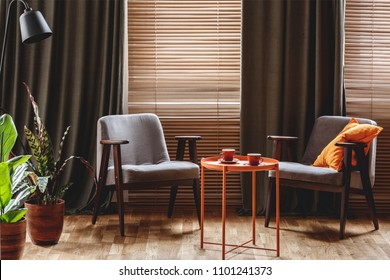 Vintage armchairs, orange coffee table with two cups, plants standing by the window with curtain and blinds in a living room interior