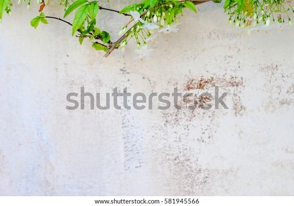 vintage background wallpaper tone color nature pattern