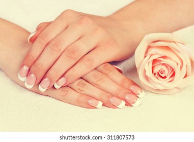 Vintage beautiful woman's hands with perfect french manicure and rose