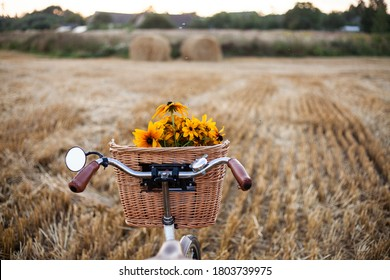 a  vintage bicycle with a bouquet of yellow flowers in a basket against  the background of a harvested rye field with haystacks