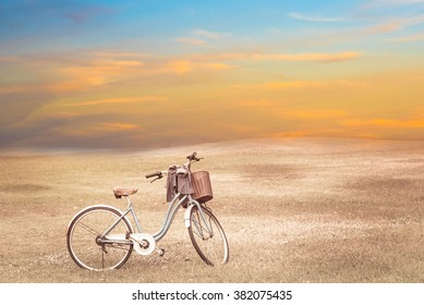 vintage bicycle on vintage outdoor park.  Old bicycle and the green plants. Vintage Bicycle with flowers on summer landscape background