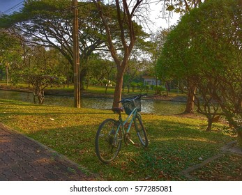 Vintage bicycle parking on grass with green