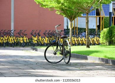 Vintage bike over modern style bike with park background.
