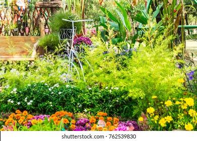 Vintage bike planter in home flowers garden on summer.