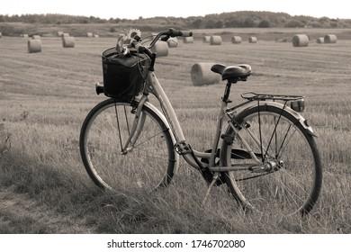 Vintage bike tour around the farms. neutral colors.