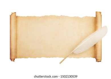 Vintage blank paper scroll isolated on white background with feather.