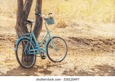 Vintage blue bicycle with basket of flowers near tree at park