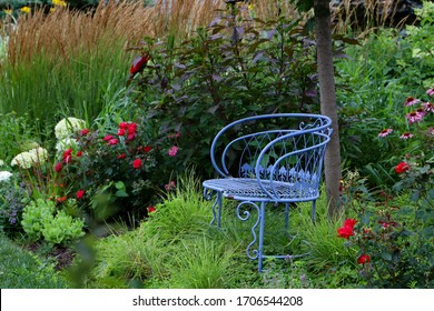 Vintage blue garden bench is focal point of this Midwest garden with hydrangeas, ornamental grasses, coneflowers and hibiscus