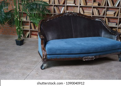 vintage blue sofa in loft living room. palm tree in pot. in the office a large library. huge bookcase