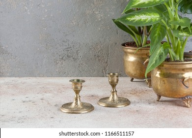 Vintage brass candlesticks and green plants in brass flower pots on concrete background. Copy space for text.