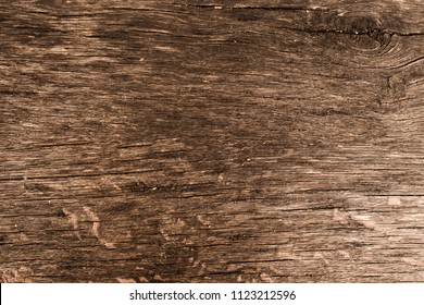 Vintage brown wooden texture background. Front view with empty space.