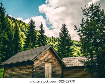 Vintage Cabins in the Woods