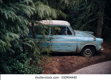 Vintage car in the forest