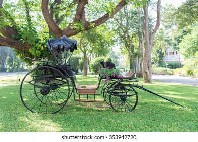 Vintage carriage on a green lawn
