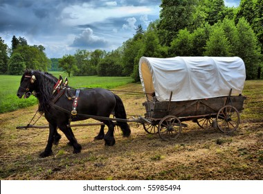 Vintage chariot with two black horses