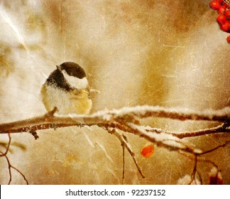 Vintage Christmas card with an adorable chickadee in the snow with copy space.