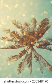 Vintage color stylized palm tree with bright party bokeh light overlay, double exposure effect