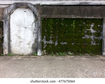 Vintage door and old concrete wall with natural lichen