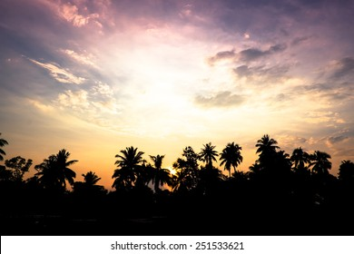 vintage filter : silhouette landscape of coconut tree ,tropical sunset scene in Thailand