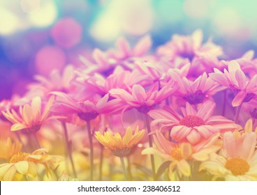 Vintage flower meadow for background