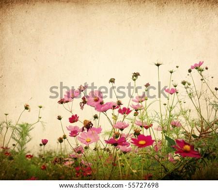 Vintage Flower Paper Background Stock Photo Edit Now 55727698