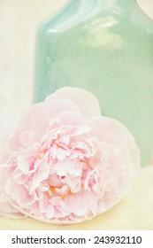 Vintage flower pink peony