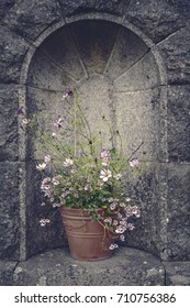Vintage flower pot in stone wall alcove.