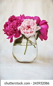 Vintage flowers pink peony
