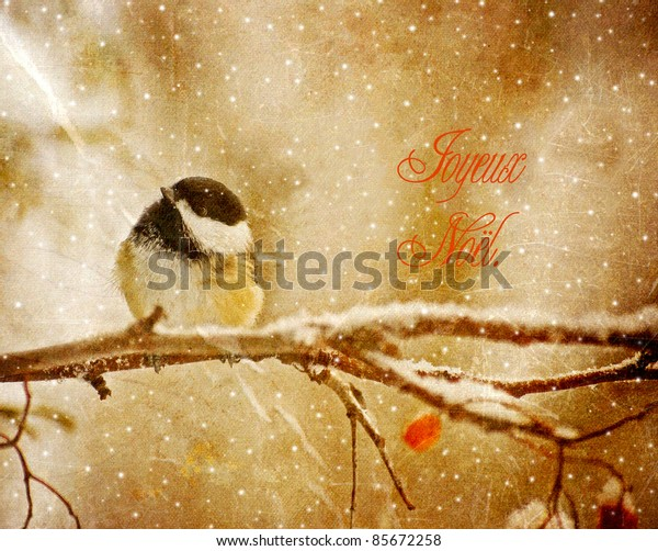 Vintage french language Christmas card with an adorable chickadee in the snow.