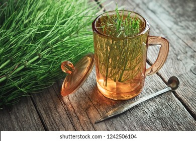 Vintage glass cup of healthy tea or infusion and bunch of horsetail herbs on wooden table. Herbal medicine.
