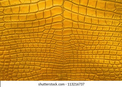 Vintage Gold Crocodile Belly Skin Texture Background.