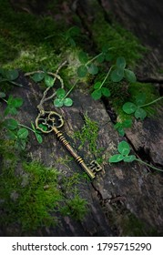 vintage golden key in mystery forest, natural background. magical beautiful key, symbol of secret garden. secrecy, mystique concept. top view