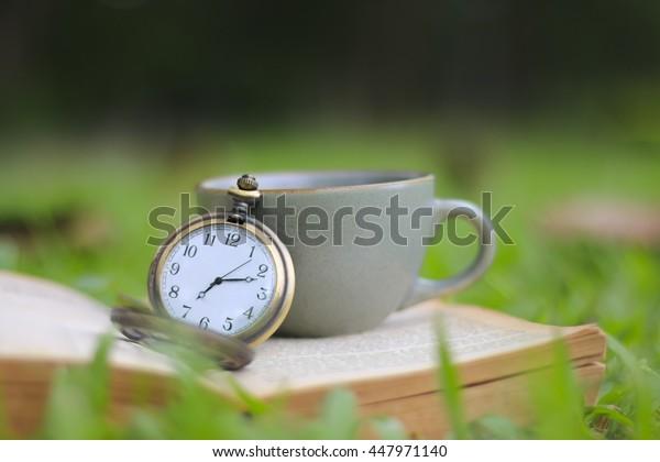 vintage golden pocket watch over blurred autumn garden background