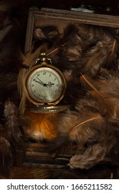 Vintage golden pocketwatch on ten to three in the wodden jewelry box surrounded by the brown and orange lightsome airy feathers