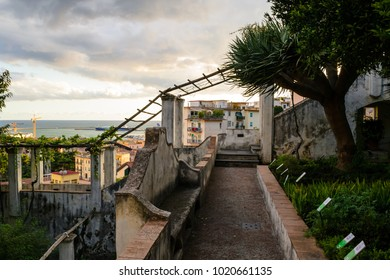 Vintage good looking outdoor stairway and vine canopy in Minerva garden in Salerno,Italy. It is a wonderfulplace designed on differents terraces levels with a fairytail atmosphere, out of time.