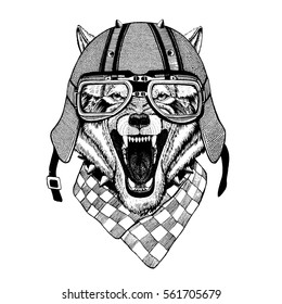 Vintage Image of WOLF for t-shirt design for motorcycle, bike, motorbike, scooter club, aero club