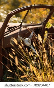 Vintage junk yard car with steering wheel surrounded by a field of yellow grass