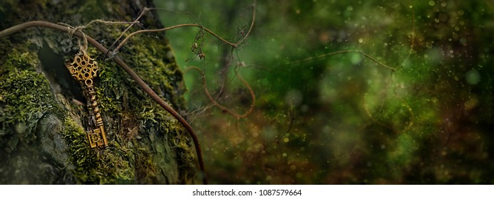 vintage key in the tree. magical composition with beautiful key in nature.. soft focus, toning, grunge. long wide banner