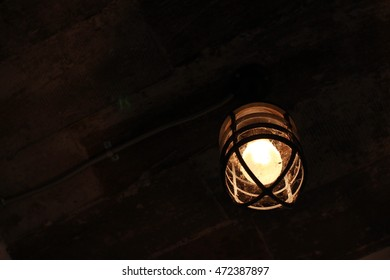 vintage lamp is on and natural background, green trees and light bulb from the lamp.