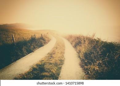 vintage landscape background with a path