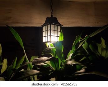 vintage lantern in the garden