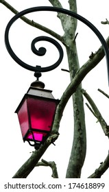 Vintage lantern magenta color glass and the tree twigs. (Arles, Provence, France)