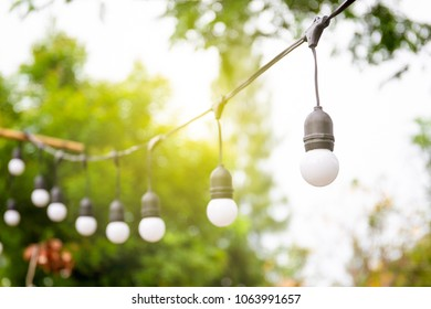 Vintage light bulbs hanging on a cable in the garden close up.