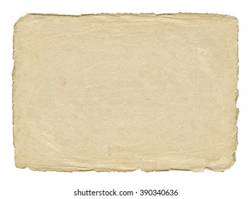 Vintage light paper blank with torn edges isolated on white background.