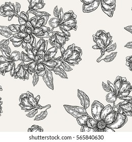 Vintage magnolia flowers, buds and leaves. Seamless pattern. Illustration for fabrics, gift packaging, textiles and card design