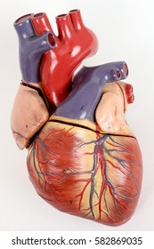 Vintage model heart isolated on white background