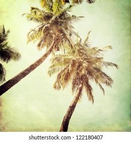 vintage palm background