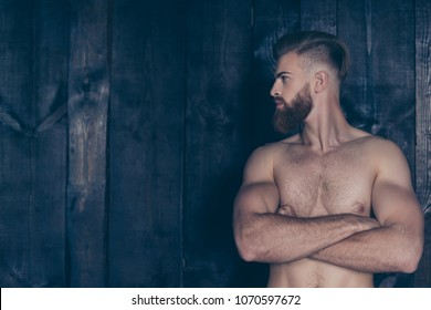 Vintage pampering lifestyle concept. Portrait of handsome attractive sexual strong neat groomed stylish trendy sporty sportive muscular brave powerful man isolated on wooden planks background