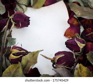 Vintage paper and dried rose